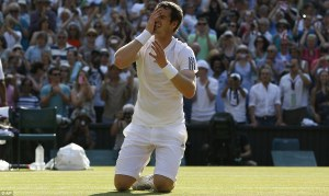 Murray's quest ended with Djokovic's ball hitting the net Courtesy of Daily Mail UK